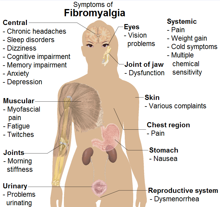 fibromyalgia and massage